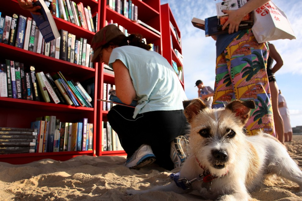 SYDNEY, AUSTRALIA - JANUARY 31:  A beach goer selects books with their dog from 30 red Ikea Billy bookcases lined up to form the world's longest outdoor bookcase to celebrate the 30th birthday of the brand's signature furniture piece, at Bondi Beach on January 31, 2010 in Sydney, Australia. The bookcases were filled with thousands of books which beachgoers can swap for one of their own or make a gold coin donation to buy, with proceeds to The Australian Literacy & Numeracy Foundation.