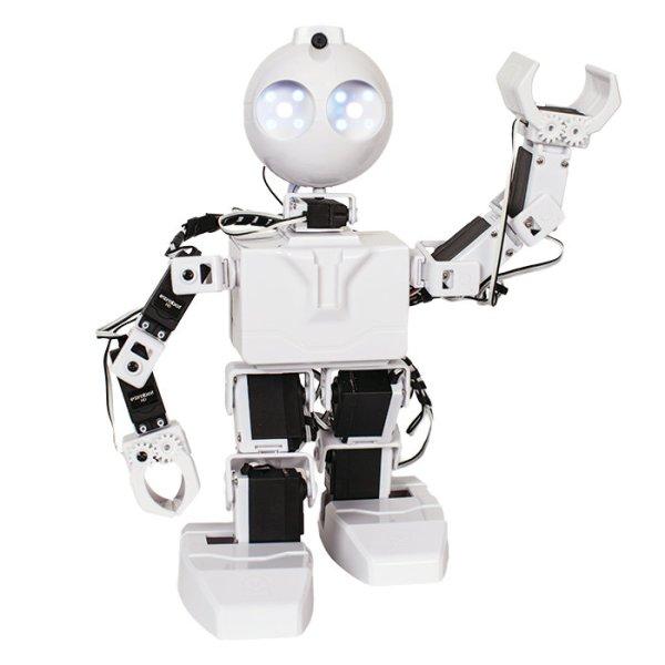 EZ Robot.
