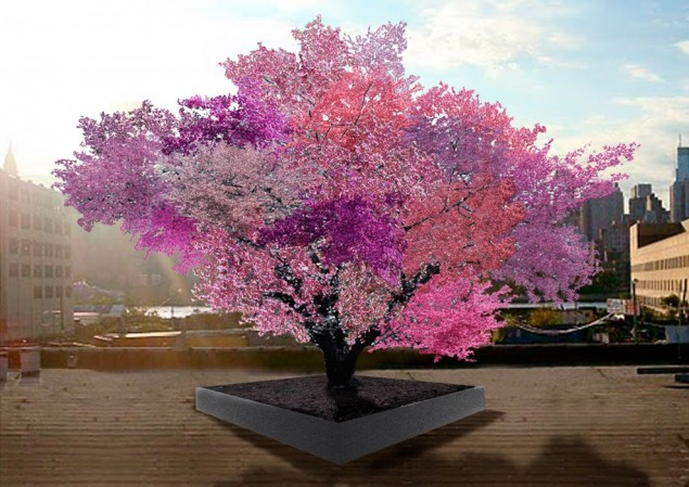 A rendering of 'the tree of 40 fruits.' (Photo: Courtesy of the artist)