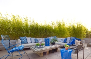 And expansive outdoor space. (The Corcoran Group)