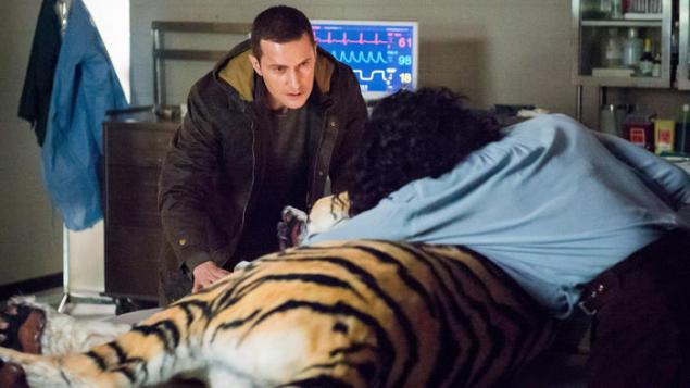 Tiger, tiger burning bright... (NBC)