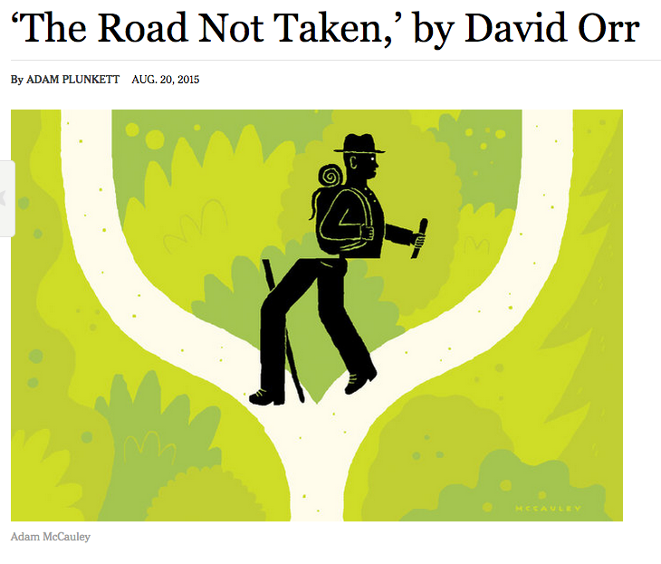 A screenshot of the illustration in Adam Plunkett's review.