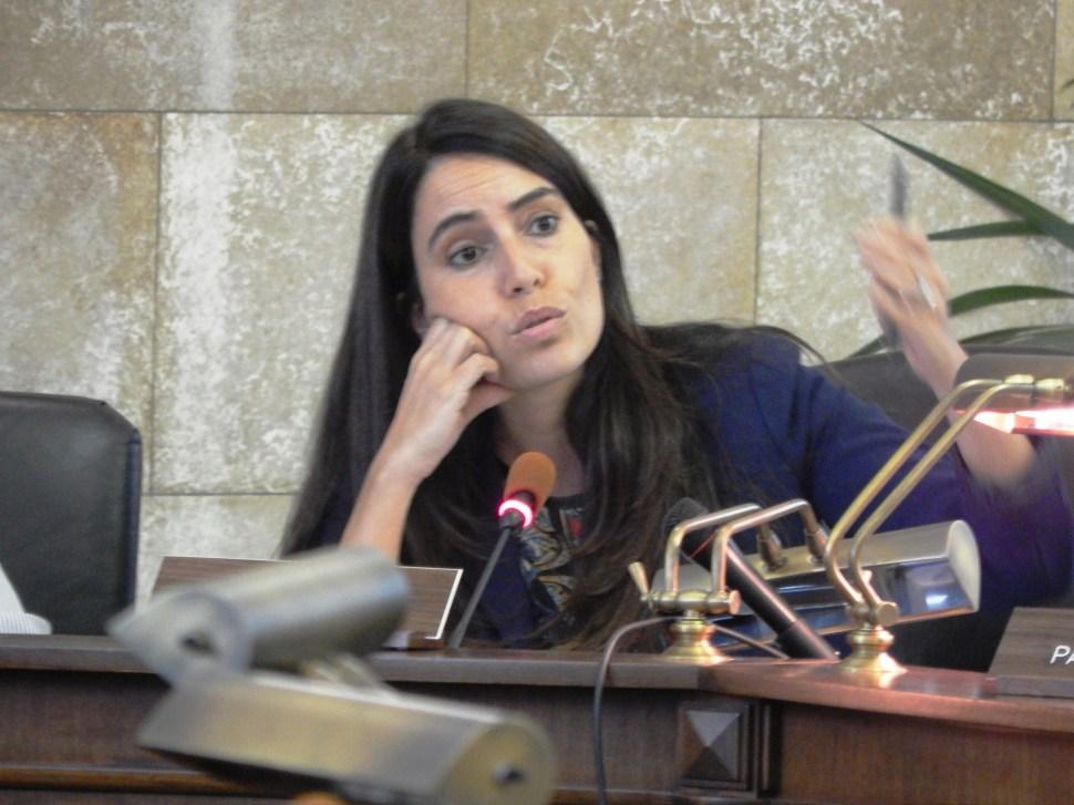 State Senator M. Teresa Ruiz (D-29).