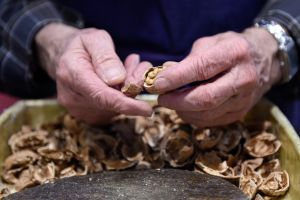 A man cracks open walnuts during the Paris international agricultural fair (LOIC VENANCE/AFP/Getty Images).