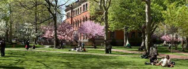 Learn about information on the idyllic campus of Pratt Institute. (Photo: Facebook)