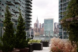 The seventh-floor roof at 4545 Center Boulevard is a 50,000-square-foot playground of evergreens, grasses and shrubs within wide stone planters. The view isn't bad, either. Photo: Celeste Sloman for Observer