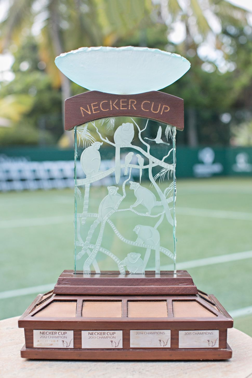 (Photo: Necker Cup).