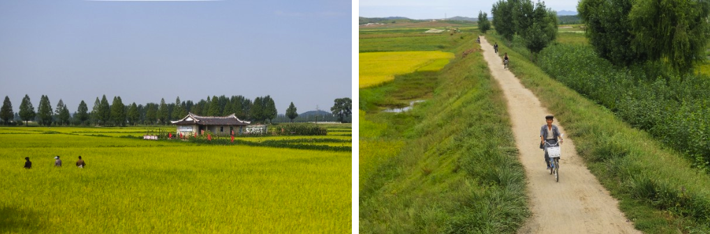 The North Korean countryside