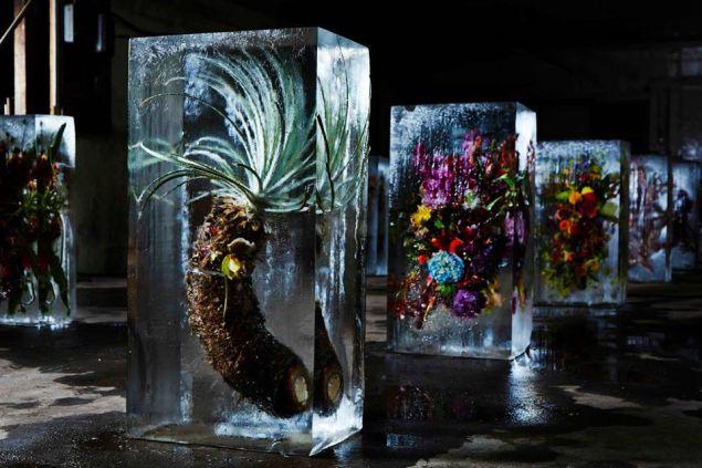 "The ""Iced Flowers"" series by Azuma Makoto. (Courtesy Spoon-tamago.com)"