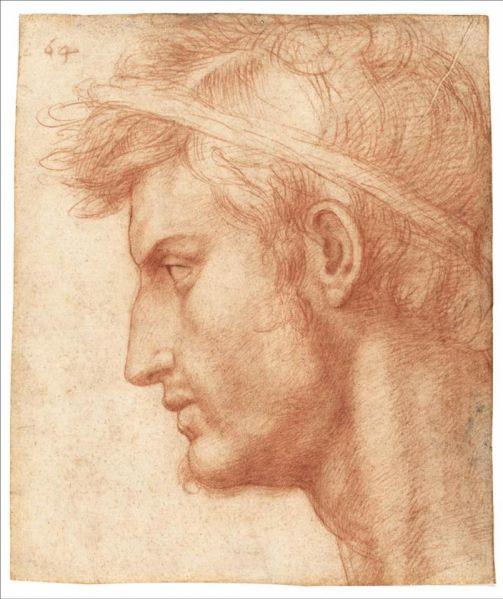 Julius Caesar by Andrea del Sarto.