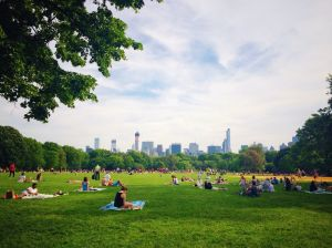 Central Park had the highest number of total crimes out of parks in the city.