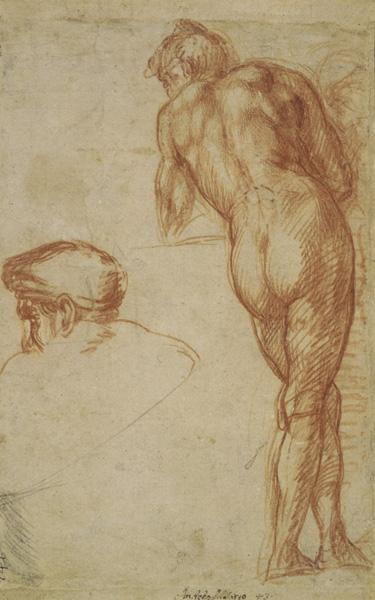 Study of a Nude Man Seen from Behind, Leaning on a Surface, and a Separate Study of His Head, ca. 1520 The British Museum; bequeathed by William Fawkener, 1769 Recto © The Trustees of the British Museum