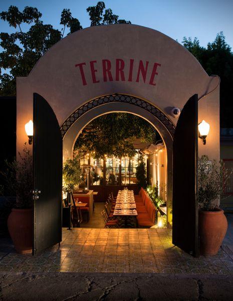 Terrine_garden 2_Jesus Banuelos