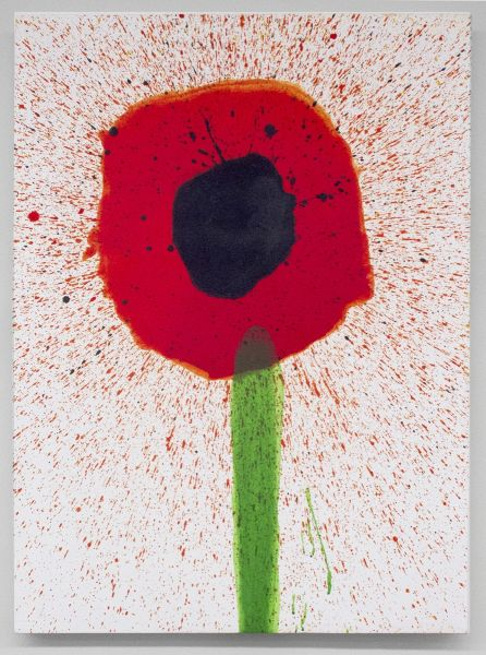 Keith Boadwee, Poppy #2, 2015. (Photo: Courtesy of Brennan and Griffin)