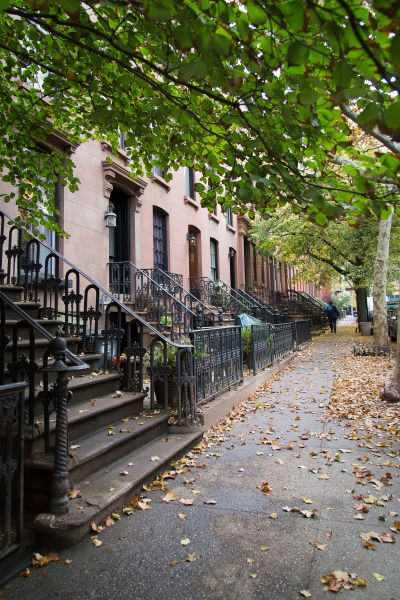 Carroll Gardens' tree-lined streets are now teeming with French people. (Photo by Kaitlyn Flannagan)