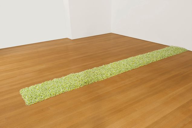 The Crystal Bridges Museum of American Art paid $7.7 million at Christie's for Untitled (1991) by Felix Gonzalez-Torres. (Promised gift of Barbra Streisand in honor of the museum's 50th anniversary)