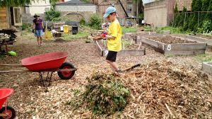 Tending to the plots at Maple Street Community Garden. (PHOTO: Alison Jacobs/Julia Stanat)