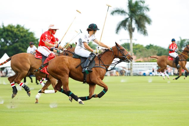 On Sunday, polo is the game to play. Or watch (Photo: Lila Photo).