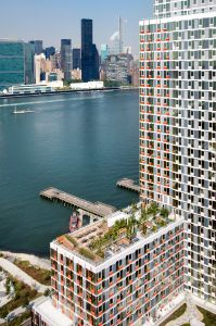Hunter's Point South, view of the rainwater-fed rooftop garden. (Photo: Courtesy of Related Companies)