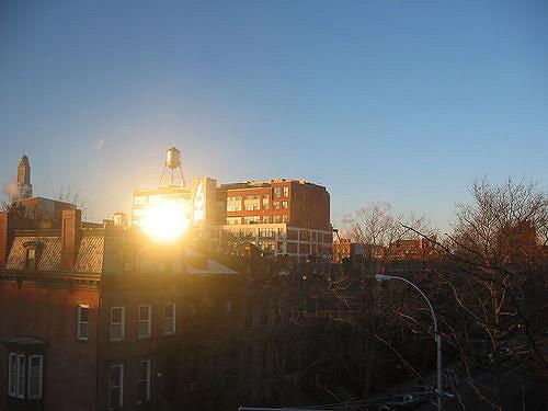 Prospect Heights, Brooklyn.