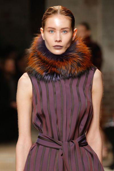 Purple and orange fur make a great contrast