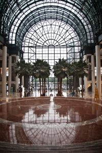 The Winter Garden Atrium. (Photo: Celeste Sloman for Observer)