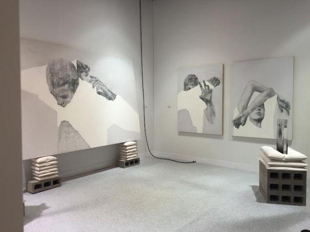 Anthony Goicolea, Installation view at Galeria Senda at Volta NY.