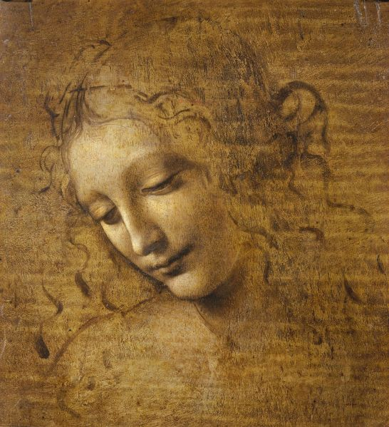Leonardo da Vinci's Head and Shoulders of a Woman.