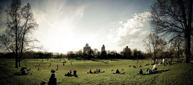 Prospect Park Long Meadow.