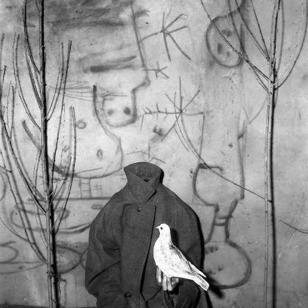 Roger Ballen, Headless, (2006).