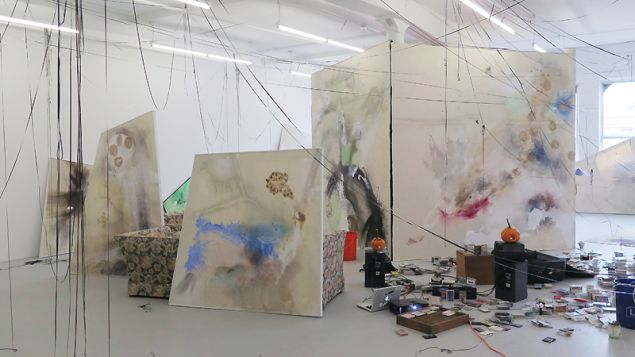 Lucy Dodd, installation view of Wuv Shack at David Lewis Gallery, 2015.