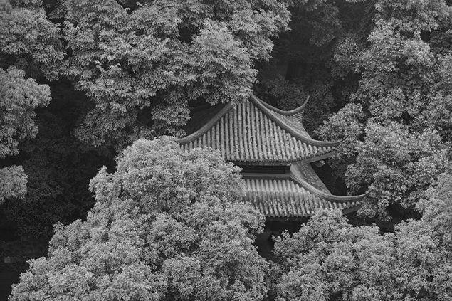 Taca Sui, Pagoda of Six Harmonies, 2015.