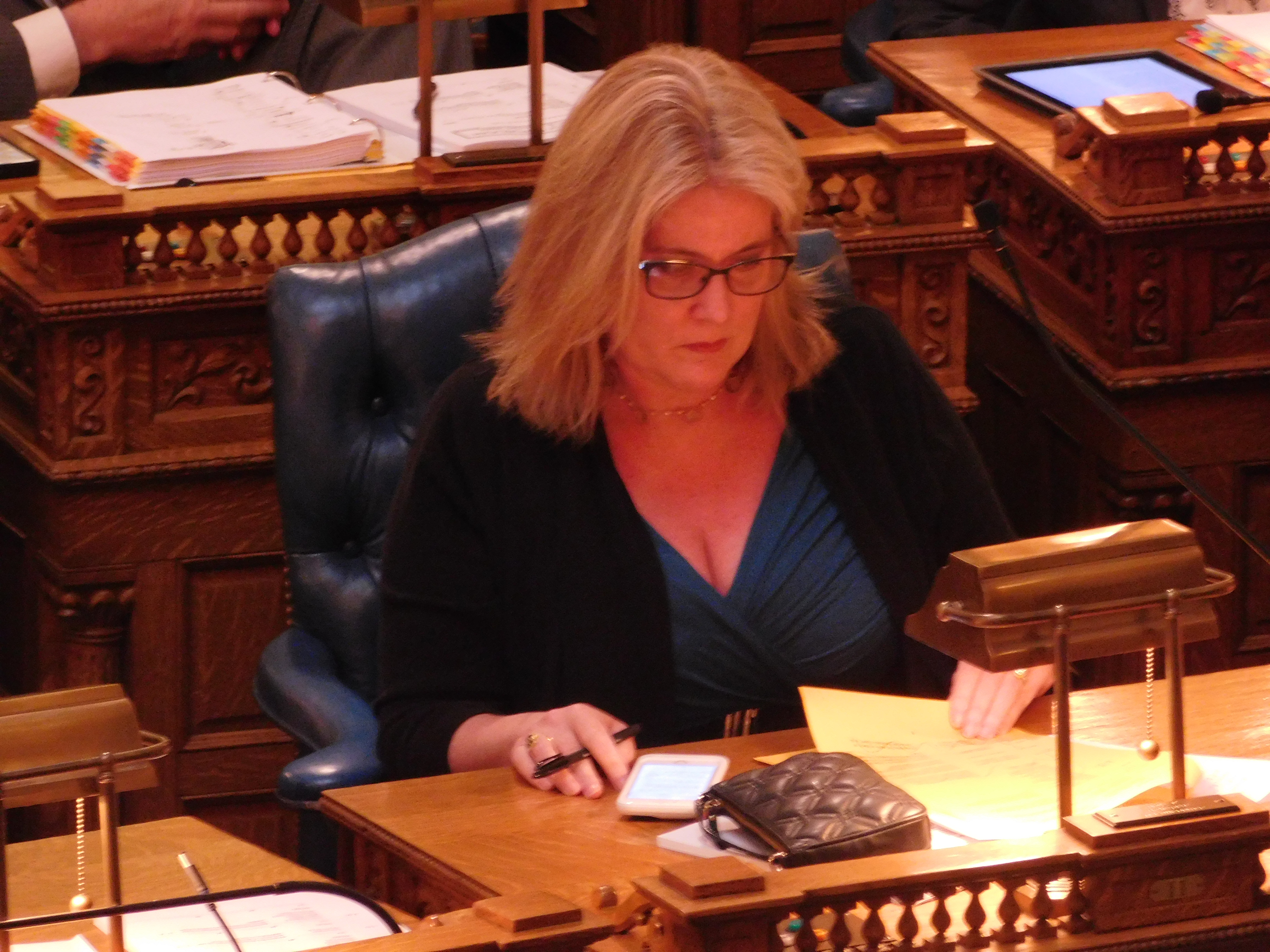 Schepisi does not support casino expansion as it is currently.