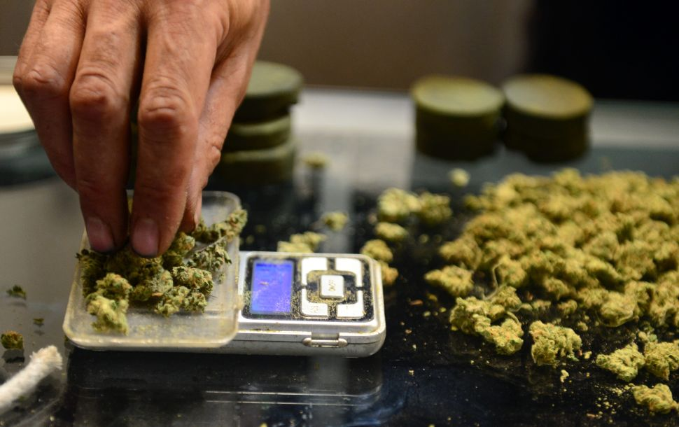 A vendor weighs buds for card-carrying medical marijuana patients attending Los Angeles' first-ever cannabis farmer's market at the West Coast Collective medical marijuana dispensary, on the fourth of July, or Independence Day, in Los Angeles, California on July 4, 2014 where organizer's of the 3-day event plan to showcase high quality cannabis from growers and vendors throughout the state. AFP PHOTO/Frederic J. BROWN (Photo credit should read FREDERIC J. BROWN/AFP/Getty Images)