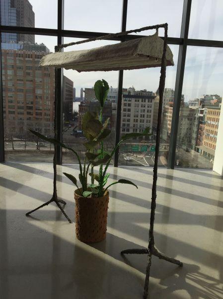 Evan Holloway, Plant with Lamp, (2016), at David Kordanksy Gallery.