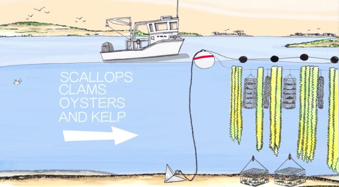 Diagram of vertical underwater farming