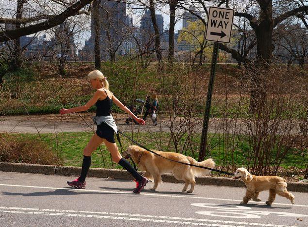 Central Park in Spring.