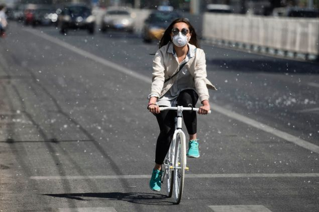 This photo taken on April 9, 2016 shows a cyclist making her way along a street filled with white pollen falling from catkin-bearing trees as the return of pleasant weather marks the arrival of the allergy season in Beijing. / AFP / FRED DUFOUR