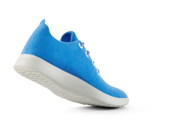 The men's shoe, in blue
