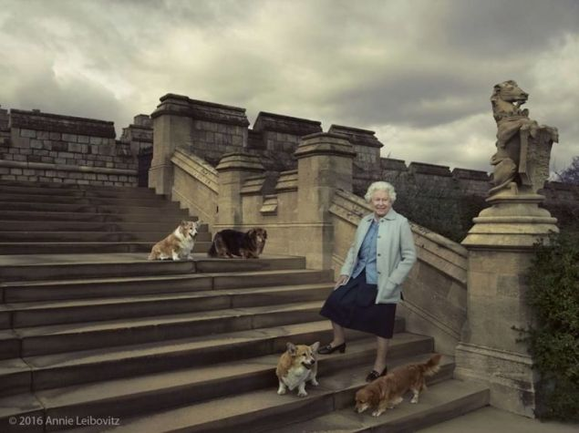Queen Elizabeth surrounded by her famous corgies.