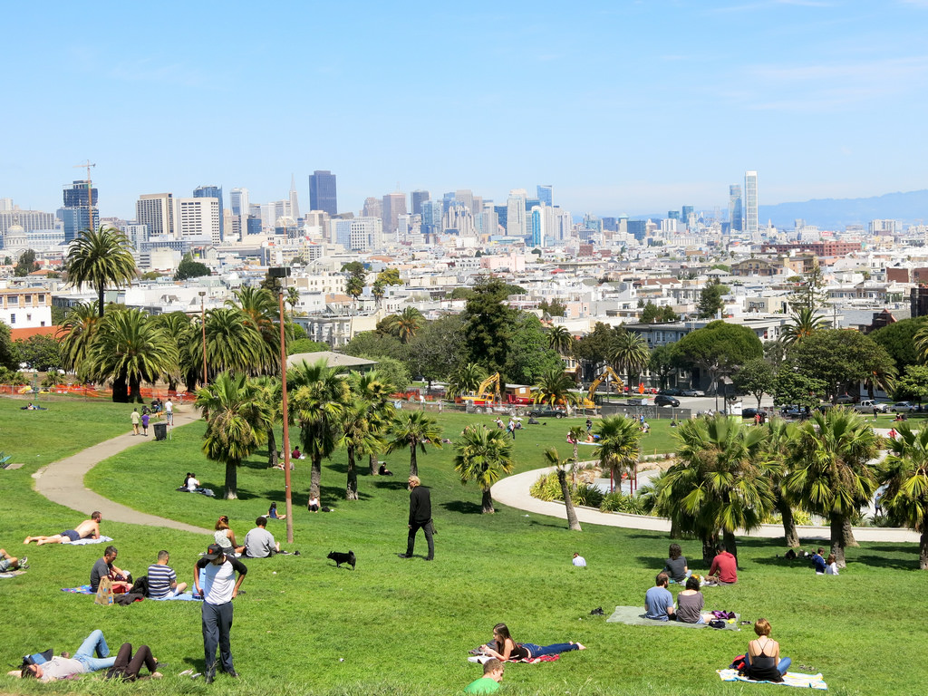 A view from a park in San Francisco.