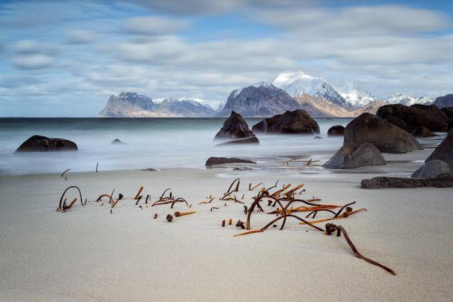 The Nordic landscape