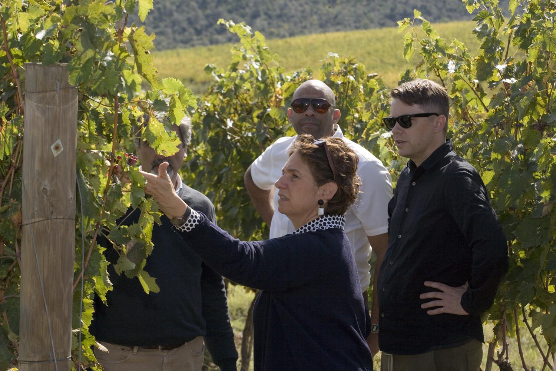 Tiziana Frescobaldi shows American artists Brannon and Wesley the vines that produce the Sangiovese grapes of CastelGiocondo Brunello di Montalcino.