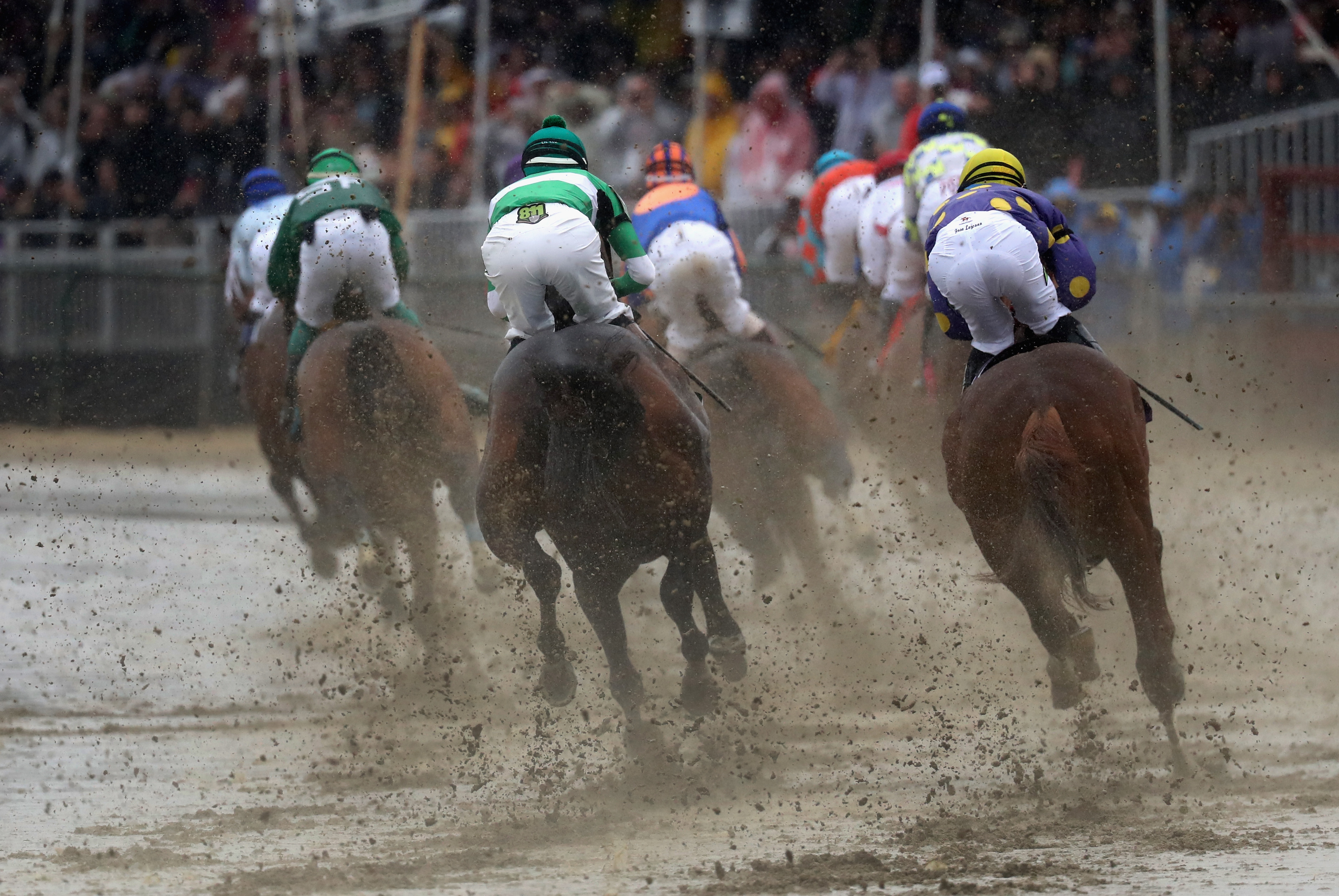 The field heads into the first turn during the 141st Running of the Preakness Stakes at Pimlico Race Course on May 21, 2016 in Baltimore, Maryland.