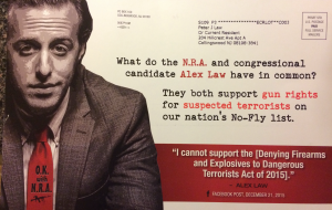Norcross' recent campaign mailer against Law