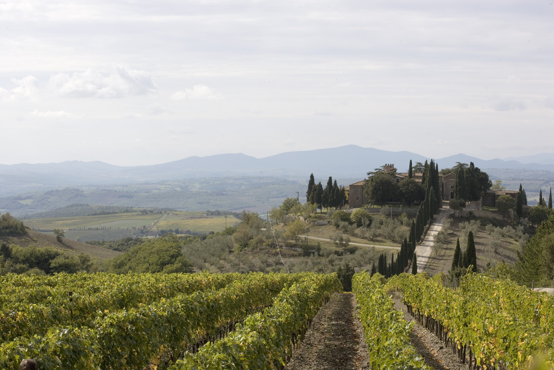 Tenuta CastelGiocondo in Montalcino, Tuscany.