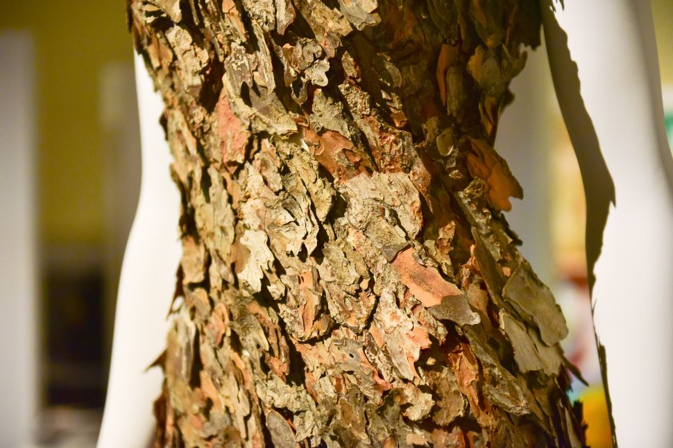 Detail of a pine bark gown by Tiziano Guardini