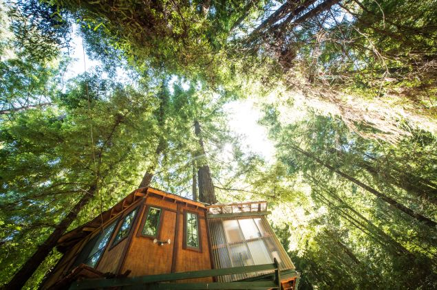 Choose to stay in Glamping Hub's treehouse glampsite, one of just 27 different styles offered.