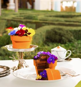 This flower pot at Jardin is actually a chocolate cake.