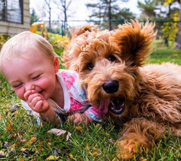 There's nothing Ellen loves more than adorable babies and dogs.